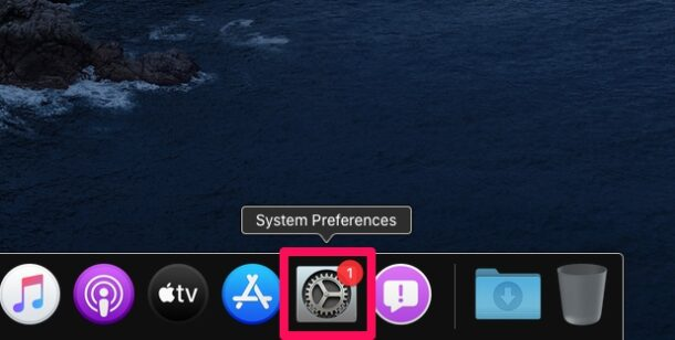 how-to-customize-dock-mac-1